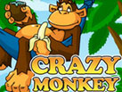 Crazy_Monkey_137x103