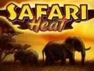 Safari_Heat_137х103
