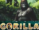 Gorilla_137x103