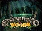 Slot_Enchanted_Woods_137х103