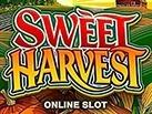 Slot_Sweet_Harvest_137x103