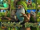 magical-forest_137х103
